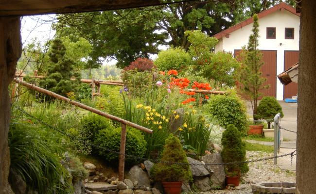 Gartenanlage_BLUMEN_1