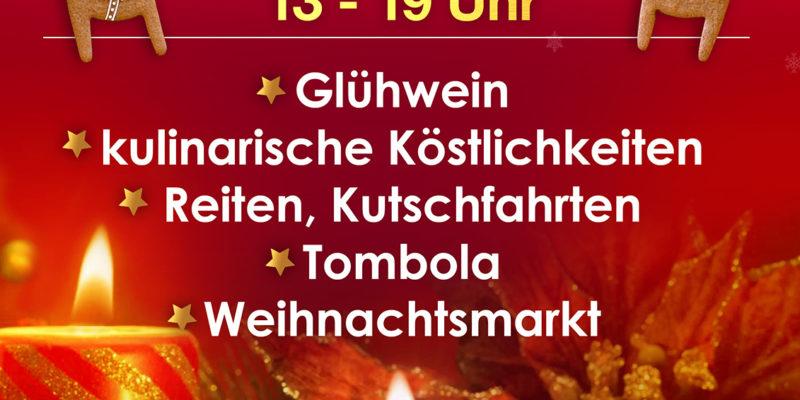glu%cc%88hweinfest-2016___01